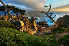 Sunset Along 17 Mile Drive, Monterey Peninsula, California