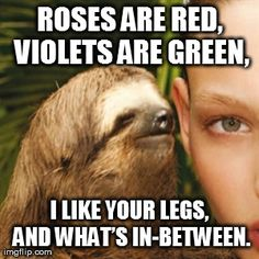 Roses are red, violets are green, I like your legs, and what's in-between.