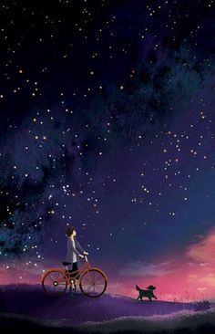 Night sky and the bicycle.