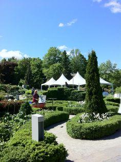 Beautiful backdrop to any event. Wedding Events, Weddings, Botanical Gardens, Perennials, Toronto, Backdrops, Sidewalk, Shit Happens, Fun