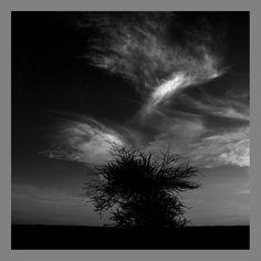 El-Aaiun - #6362Impressió Giclée B/N - Hahnemühle Photo Rag Baryta. 35x35cm #Ullsdelmón #Ojosdelmundo #ManelEsclusa #Sahara