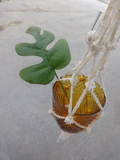 glas mit Makramee by  mygreenhaven.blogspot.com