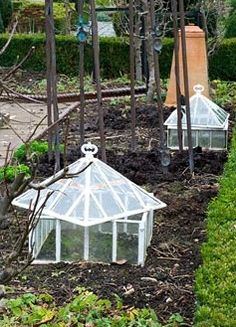 Old fashioned glass cloches in the vegetable garden in winter - Woodpeckers, Warwickshire