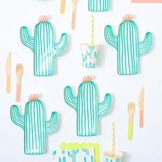 meri meri cactus party