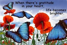 Gratitude in Your Heart Spiritual Dimensions, Thankful Thursday, You Are Blessed, Gratitude Quotes, Grateful Heart, Before Us, Photo Illustration, Illustrations, Famous Quotes
