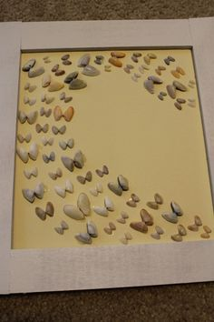 "butterfly sea shell ""flight"" framed display - easy DIY!...would be cute for a little girls room with some dipped in colors to match decor #butterfly_shell_crafts"