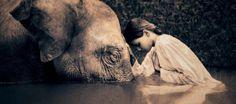La fabula del Elefante Blanco  