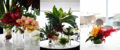 #Tropical #Orchid #Table #Centre #PohoFlowers #Poho #Flowers #Weddings