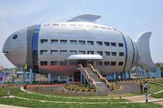 インド・ハイデラバードにある「全国漁業開発局(NFDB)」のビル(2012年04月20日) 【AFP=時事】