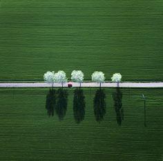 mmicro:    Spring (Klaus Leidorf)