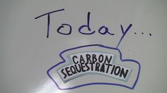 Sustainable Ag in Action: Carbon Sequestration Explained - http://www.sierraclub.org/sierra/2014-4-july-august/green-life/sustainable-agriculture-action-carbon-sequestration-explained