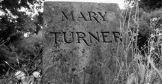 Never Forget: The Horrific Lynching Of Mary Turner And Her Baby – Counter Current News