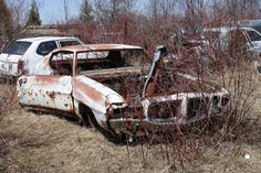 1971 Pontiac LeMans at McLean's Auto Wreckers