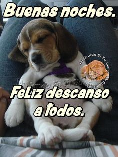 Buenas noches. Feliz descanso a todos Videos Funny, Funny Memes, Deck Party, Broken Quotes, Kids Soccer, Hello Kitty Wallpaper, Good Night Quotes, Presents For Boyfriend, Birthday Pictures