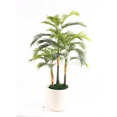 TCB-16 167CM Artificial Defiled kwai Small Palm Trees, Small Palms, Cactus Plants, Cacti, Cactus