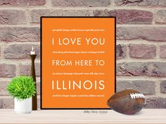 I Love You From Here To ILLINOIS art print