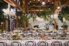 I love the juxtaposition of the rustic, raw timber beams, the lush foliage and elegant crystal chandeliers. Sheree and her team created magic for Nadisha & Hans' s wedding Photo By Hilary Cam Photography Our Wedding, Wedding Venues, Dream Wedding, Wedding Shoot, Wedding Reception, Wedding Design Inspiration, Ceiling Decor, Wedding Photography, Wedding Flowers