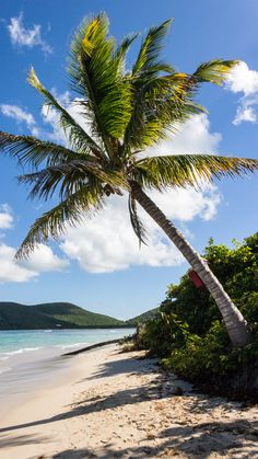 The wonderful island of Culebra, Puerto Rico. Looks like paradise, doesn't it?