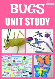 Bugs unit study - so many fun, clever, and educational learning activities for preschool Insect Activities, Spring Activities, Educational Activities, Preschool Activities, Summer School Activities, Library Activities, Preschool Lessons, Science Lessons, Summer School Themes