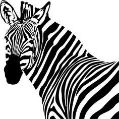 Beautiful Zebra Wall Decals and Stickers - Horse Wall Decals, Animal Wall Decals, Vinyl Wall Decals, Ninja Gear, Zebras, Cute Animals, Drawing, Cool Stuff, Beautiful