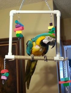 Extra Large Parrot Swing Perch Bird Toy(SALE PRICE 3 DAYS ONLY)