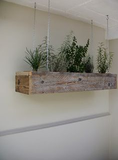 hanging planter box.... gives me an idea. Would love spices in kitchen