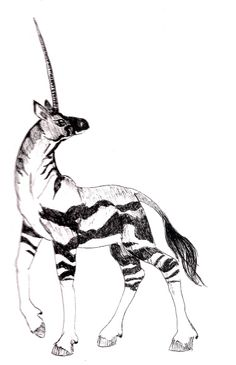 Ndzoodzoo- South African myth: the body and coloration similar to a quagga. It had one long thin horn that could curl up when not in use so it wouldn't get in the way. The horn, unlike other unicorns, did not cure disease.