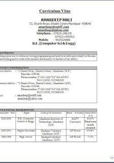 Profile Cv Examples Excellent Curriculum Vitae Resume Cv