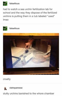 Really Funny Memes, Haha Funny, Hilarious, Lol, Math Memes, Dankest Memes, Jokes, Tumblr Stuff, Funny Tumblr Posts