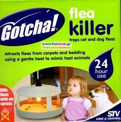 σταθερή συσκευή καταπολέμηση ψύλλων Fleas, Dog Cat, Cats, Gatos, Cat, Kitty, Kitty Cats