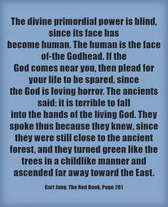 The divine primordial power is blind, since its face has become human. The human is the face of-the Godhead. If the God comes near you, then...
