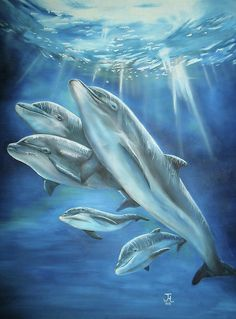 Dolphin Oil Paintings - Dolphin Oil Painting On 20 Stretch Canvas Primed Before Impressionist Ocean Landscape Oil Painting On Canvas Hand Dolphin Curiosity Oil Painting P. Dolphin Drawing, Dolphin Painting, Dolphin Art, Wyland Art, Dolphin Family, Dolphins Tattoo, Bottlenose Dolphin, Humpback Whale, Water Animals