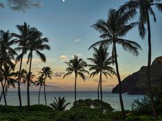 Makapuu Beach and Lighthouse at Twilight, Oahu, Hawaii Water Rights / SuperStock Tropical Backyard Landscaping, Landscaping With Rocks, Hawaii Water, Oahu Hawaii, Landscape Design Plans, Best Rock, Wonderful Places, Scenery, Lighthouse