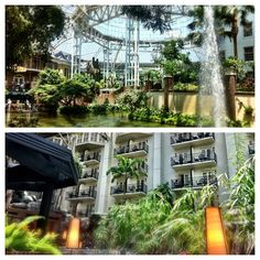 Sights to see at Gaylord Opryland. Photo by bleephotography • Instagram
