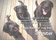 Happy National Dog Day from your friends at Dogster!