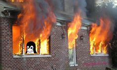 У чувака загорелся дом. Он кинулся спасать сервер с #Linux, но пожарные запретили. Он всё равно полез, спас сервак с важными данными, но теперь отправится в тюрьму — создал дополнительную опасность для жизни спасателей.  Подробности драмы: http://liberatum.ru/e/linux-fire  #Debian #пожар #спецслужбы #программы #софт #тюрьма #полиция #пожарные #ЧП #ЧС #происшествия #новости