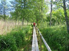Westerholm path