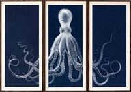 All About Vignettes: It's Not the Owl, It's the Octopus