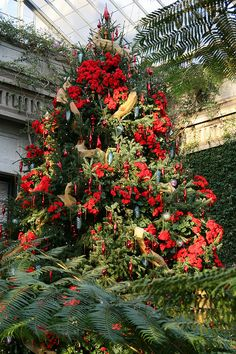 Main tree in conservatory-flood of red - Longwood Gardens