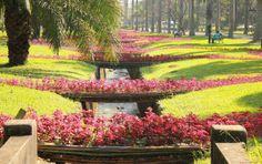 Parques e praças para aproveitar os dias livres