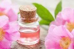 What Are the Benefits of Rose Hips Oil? | LIVESTRONG.COM