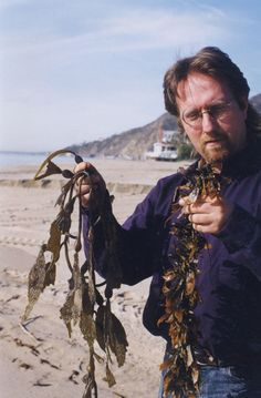 Guide to Edible Seaweed - Real Foods - MOTHER EARTH NEWS