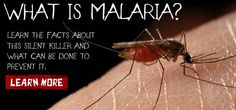 Summer is in full swing and with every mosquito bite I can't help think of those suffering from Malaria and the easy way to prevent it.  Bite Back   Help End Malaria!