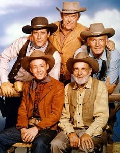One of the casts on TVs Wagon Train - Back row L-R- Robert Fuller, John McIntire, Terry Wilson. Front row L-R - Michael Burns, Frank McGrath -- Wagon Train ran from Tarzan, John Mcintire, Before I Forget, Robert Fuller, Into The West, Tv Westerns, Old Shows, Vintage Tv, Vintage Horror