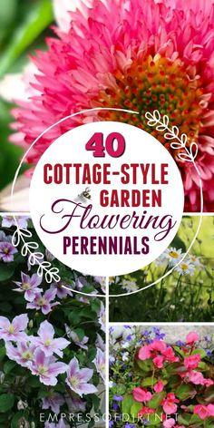 Choosing The Best Flowering Perennials For A Cottage Style Garden. # Gardening #gardens