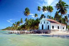 Carneiros Beach and St. Benedict Church from Recife Join this full-day trip and visit Carneiros Beach, selected as one of the best beaches in the world. Its isolated location is home clear waters, natural pools and coconut trees that make it even more beautiful. Visit the church of St. Benedict famous for its history and wedding ceremonies.You have the option to purchase with a catamaran sailing on the calm, clear and shallow sea waters and a stop for a swim in the shoals (at ...