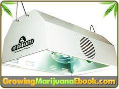 lights for growing marijuana http://www.growingmarijuanaebook.com