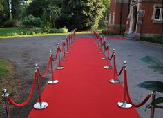 item for a red carpet party: the red carpet. Party Food Themes, Casino Party Decorations, Casino Theme Parties, Party Ideas, Red Carpet Theme Party, Red Carpet Event, Hollywood Red Carpet, Hollywood Theme, 10th Birthday Parties