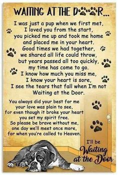 For my 3 Boxers in doggy heaven. You definitely left your paw prints on my heart. I Love Dogs, Puppy Love, Cute Dogs, Animals And Pets, Cute Animals, Dog Poems, Poems About Dogs, Pet Loss Grief, Pet Remembrance