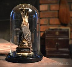 WAS Gothic Steampunk Victorian Taxidermy Sleeping Fuit Bat Dome Taxidermy Bat, The Bell Jar, Bell Jars, Tattoo Studio, Cabinet Of Curiosities, Before Midnight, Gothic House, Gothic Steampunk, Weird And Wonderful